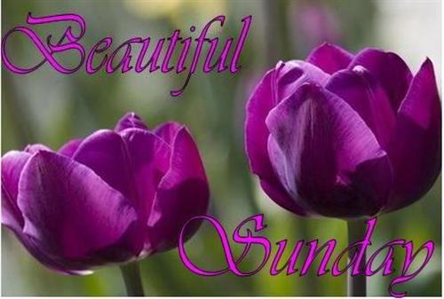 Sunday Beautful