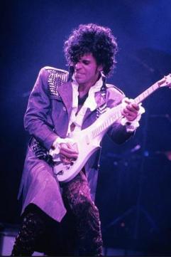 Prince purple 2