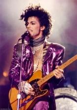 Prince purple 4